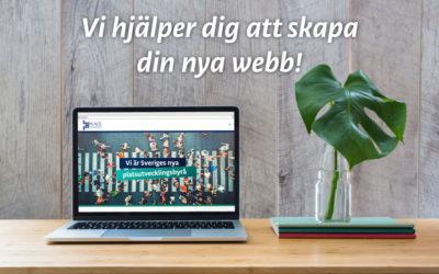 BoreNet och Place Promotion i nytt samarbete kring lokalproducerade webbplatser