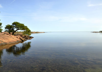 Oskarshamns kommun – Utredning av framtida organisation destinationsutveckling, platsmarknadsföring och turismverksamhet